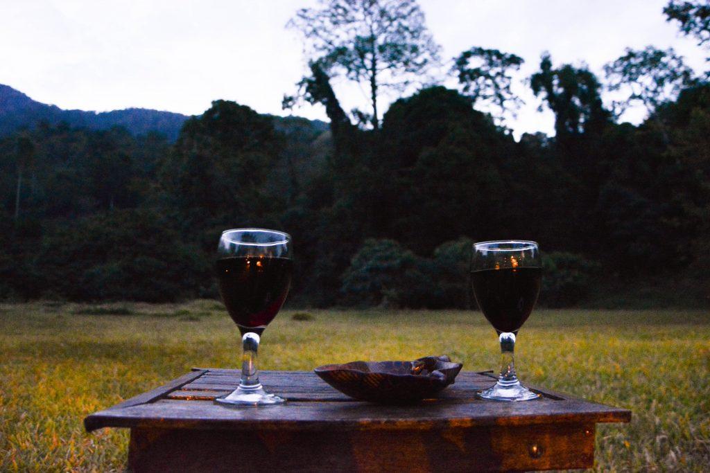 hondo Hondo forest camp