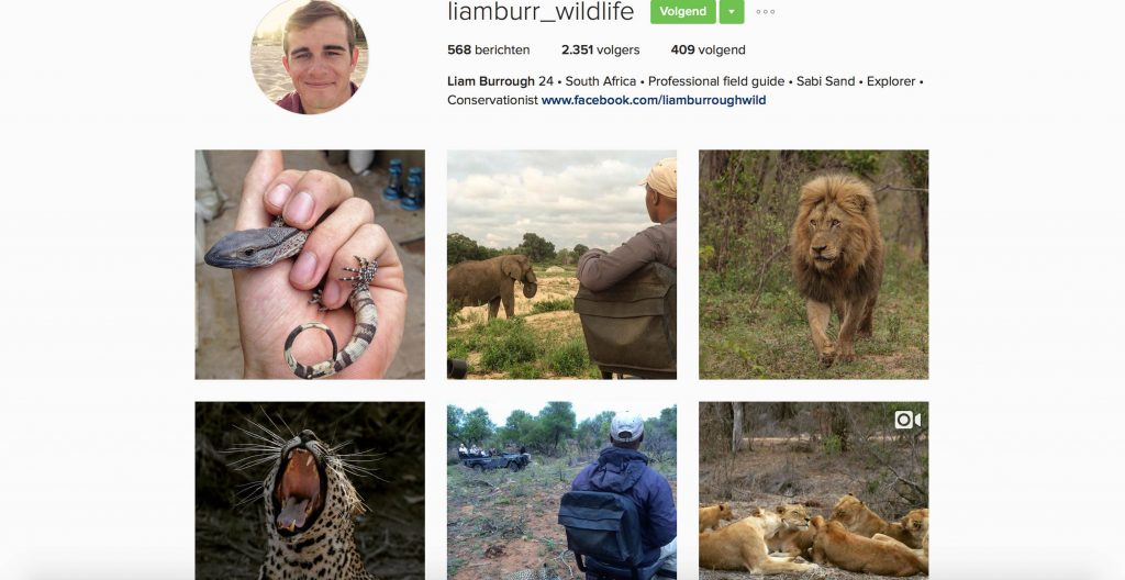 instagram Liamburr_wildlife